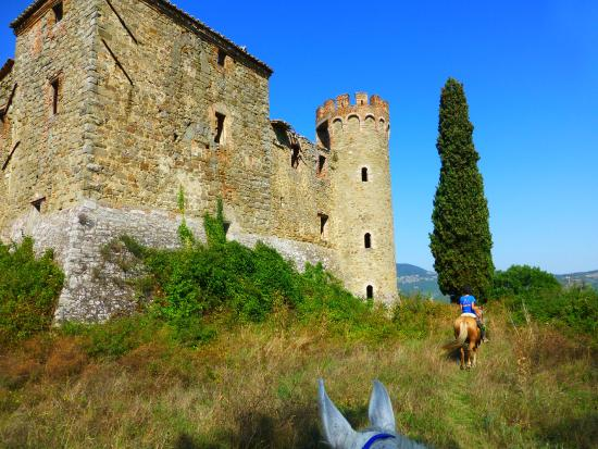 Centro di Equitazione Marana: Arriving at one of the  two castle ruins
