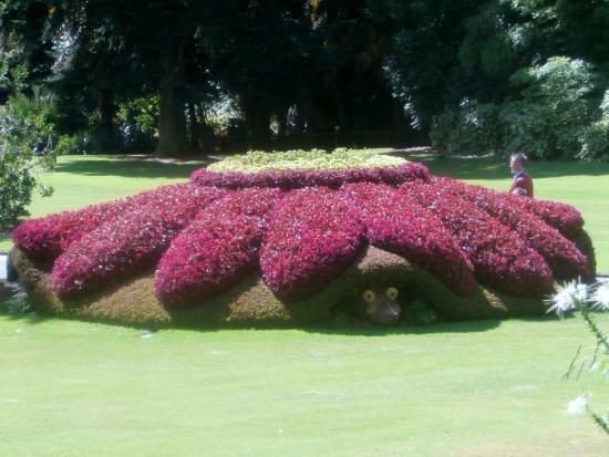 Jardin des Plantes: parterre