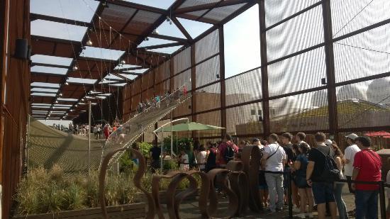 Expo 2015: Brasil