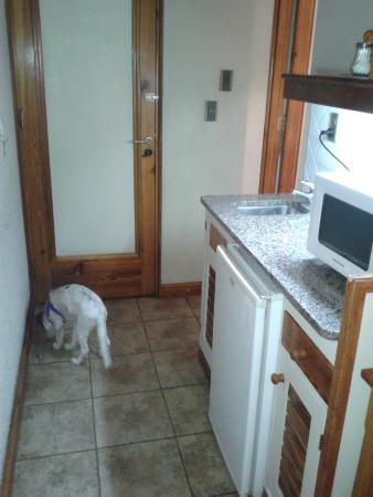 Xumec Apart Hotel: Habitaciones pet friendly!