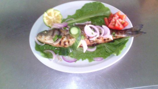 Tony's Cuisine Corner: fresh branzino / spigola....