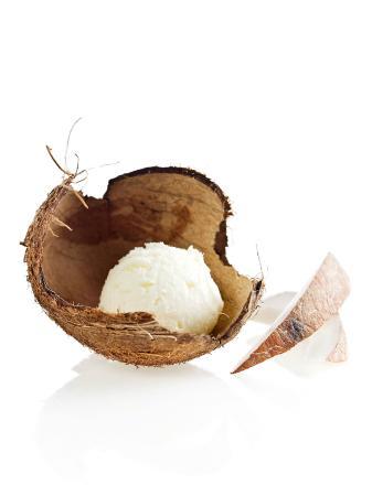 Gelados Santini: Coconut