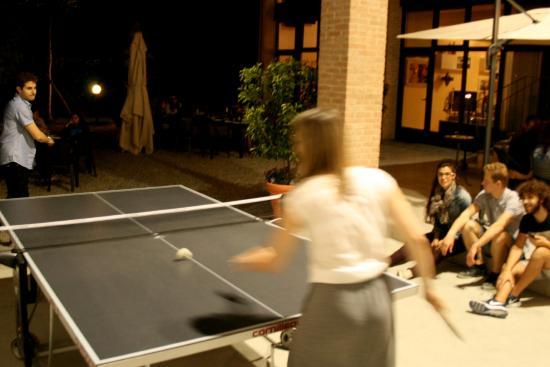 Agriturismo Argaland Parma: ping pong