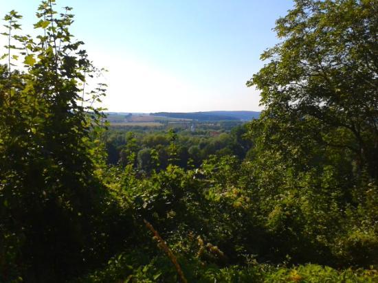 Heinrichsturm: Вид с горы, на которой стоит башня