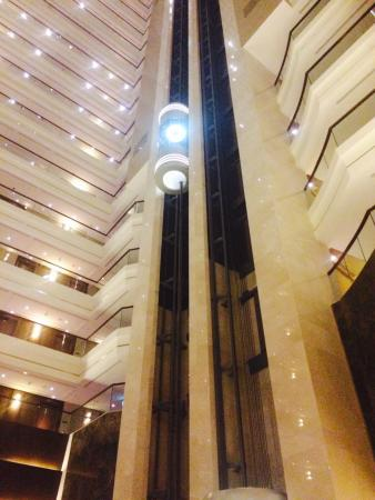 Bilde fra Dusit Thani Abu Dhabi