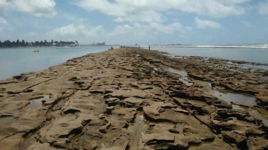 Muro Alto Beach: arrecife