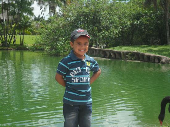 Mangal das Garcas: Lago