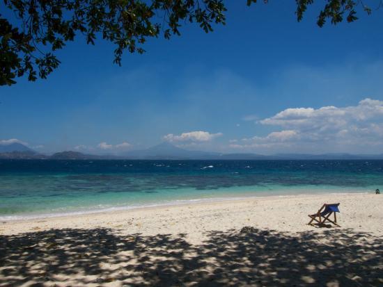 Murex Bangka Resort: Beach and reef