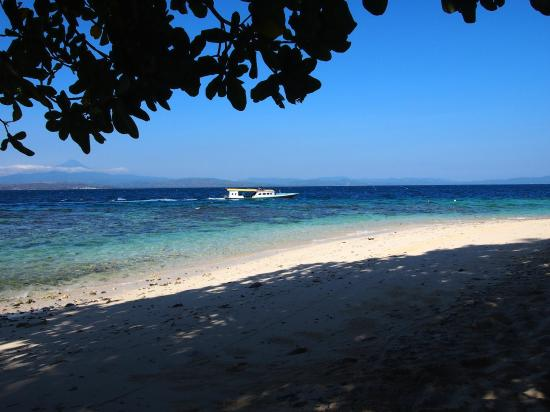 Murex Bangka Resort: Beach