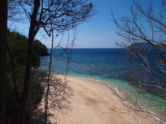 Murex Bangka Resort: Beach and reef from top