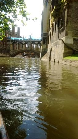 Lets Go Punting: Forget Venice, just visit Cambridge.