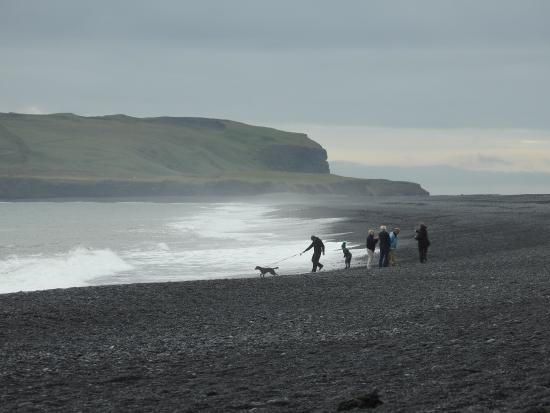 Helena Travel Iceland: Walking the dog on Black Sand Beach