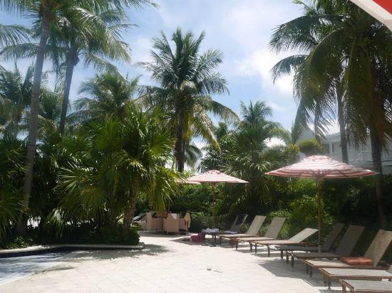 Tranquility Bay Beach House Resort: Transat prés de la piscine