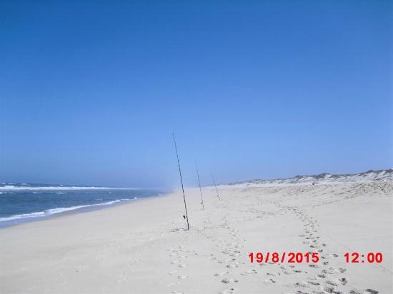 Praia dos Palheiros da Tocha: ...