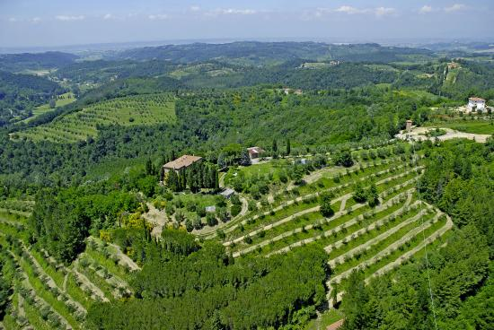 Tasty Tuscany: From the top