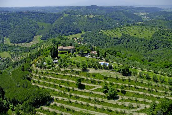 Tasty Tuscany: Aerial photo