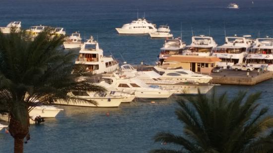 Bilde fra Hurghada Marriott Beach Resort