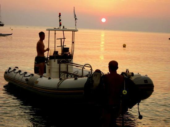 Favone Plongée: Départ bateau le matin