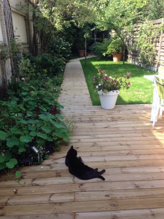 Garden in the City: Garten