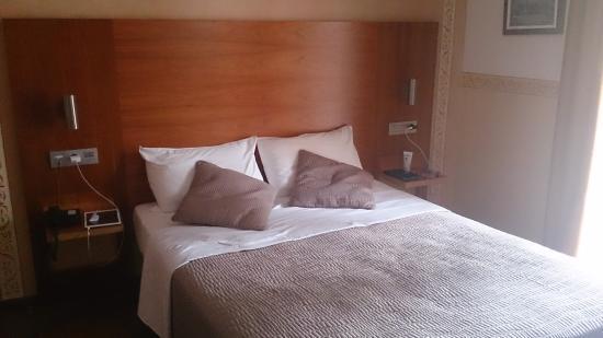 Villa Erina Park Hotel : Habitación