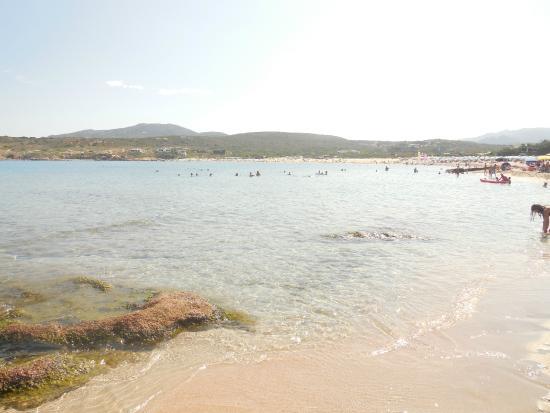 Spiaggia La Marinedda: Panorama