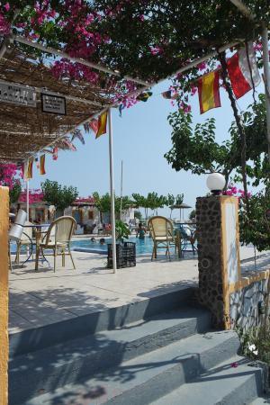 Santorini Camping: Bar en zwembad