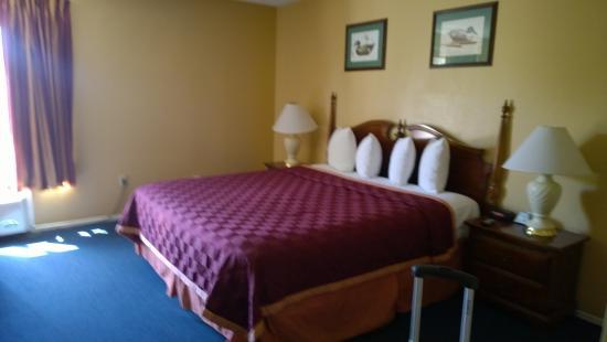 布埃納派克豪生飯店照片