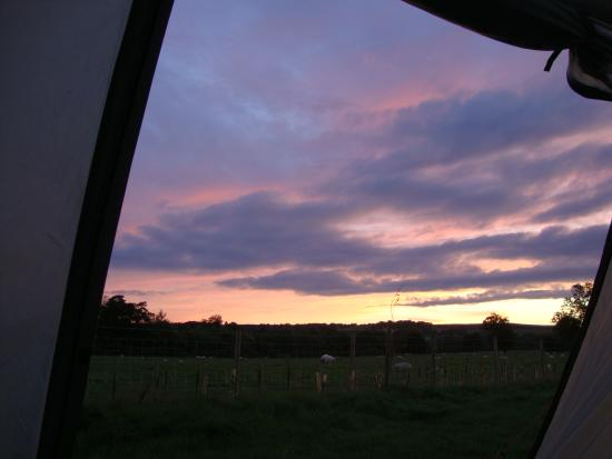 Mains Farm Caravan Site: View from tent
