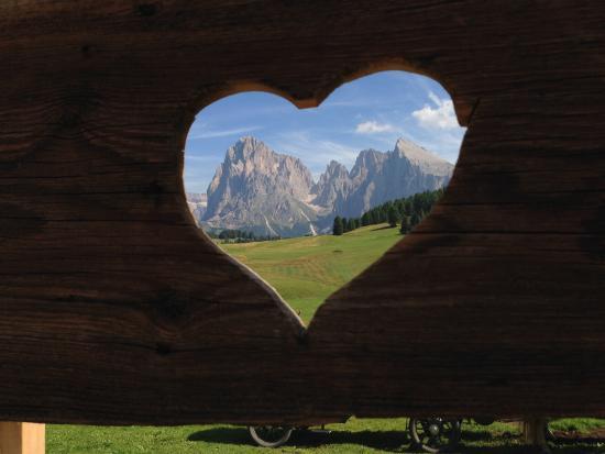 Mountain Chalet Pra Ronch: La nostra selva