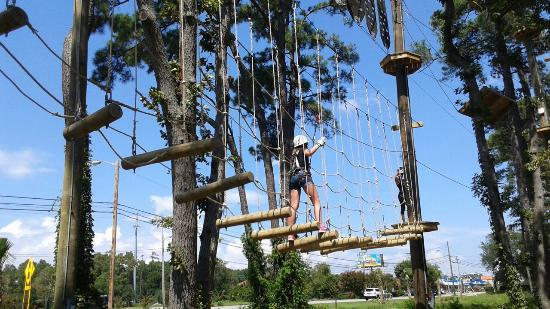 Aerial Course Picture Of Radical Ropes Myrtle Beach Tripadvisor