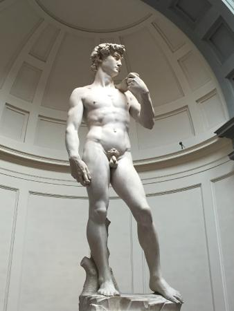 Galleria dell'Accademia: Here is the Man!