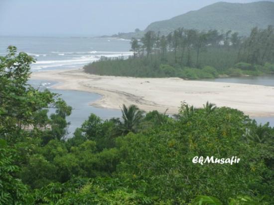 A Beach on the Konkan coast.
