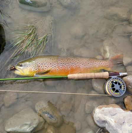 Waterton River Suites: Front-door access to flyfishing