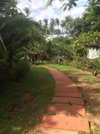 Koh Tao Cabana: photo7.jpg