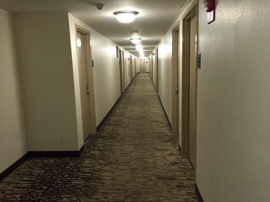 Red Roof Inn: Corridor on the third floor