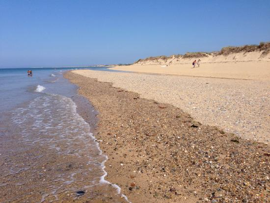 Picture of herring cove beach provincetown for Cove cape cod