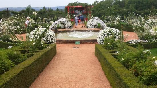 Jardin blanc photo de les jardins du manoir d eyrignac - Jardin du manoir d eyrignac ...