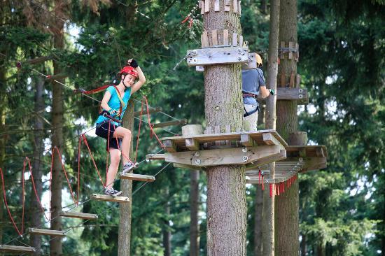 Adventureforest