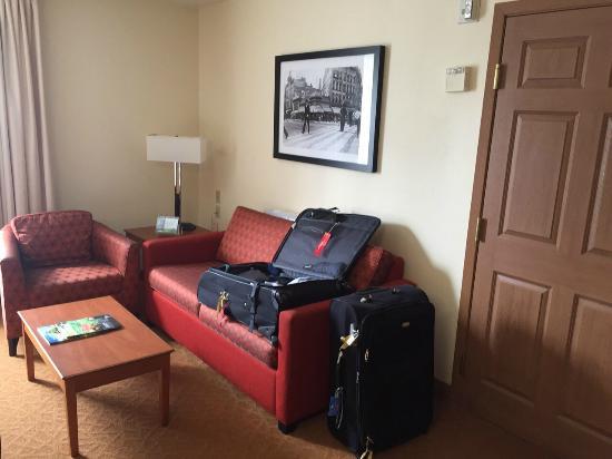 TownePlace Suites Detroit Dearborn: Sofá Cama - CASAL