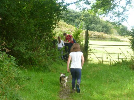 South Torfrey Farm: Footpath near Fowey
