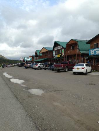 Denali Grizzly Bear Cabins & Campground照片