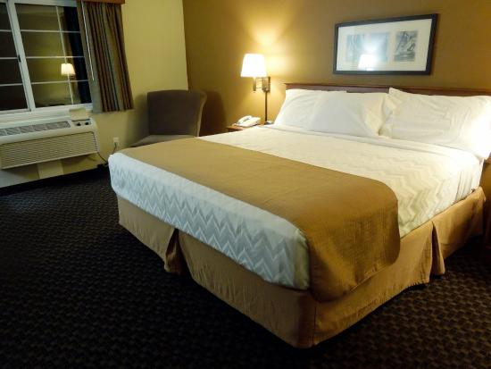 AmericInn Lodge & Suites Charlevoix: King Room