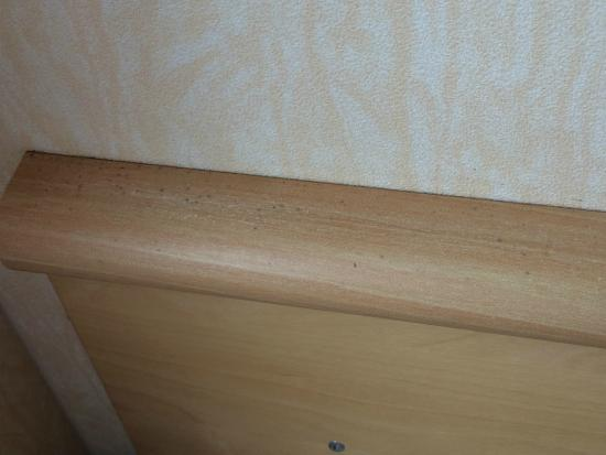 Coopers Beach Holiday Park: Mould on headboard in kids room