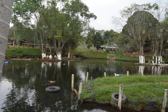 Parque La Pradera: otra toma del lago desde otro ángulo