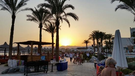 Sharm Plaza Hotel: Just a few pics from our recent stay at Sharm Plaza. Beautiful place with friendly staff and gre