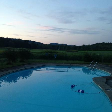 The Guest House at Field Farm: The swimming pool.