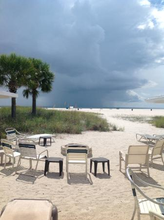 Seahorse Cottages: Looking out over the Gulf from Cottage #3