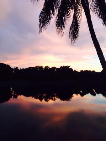 Trianon Bonita Bay: photo5.jpg