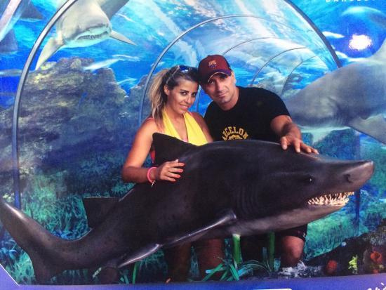L'Aquarium de Barcelona: photo0.jpg