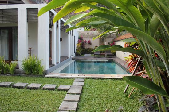 The Samaya Bali Ubud: Our private pool